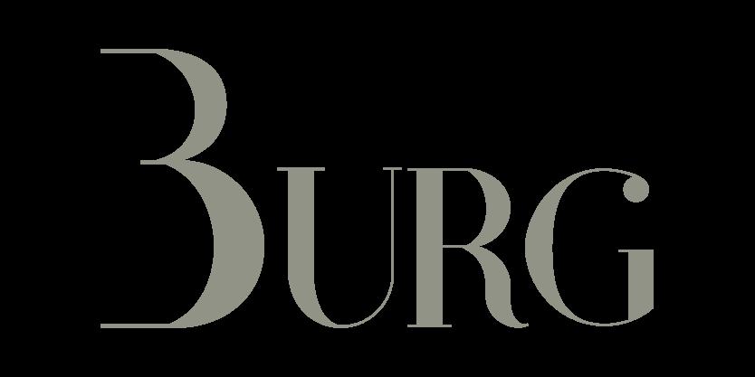 logo Pierre Burg